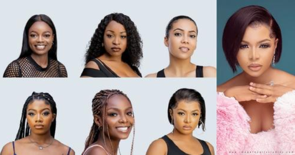 Profiles Of The Big Brother Female Housemates